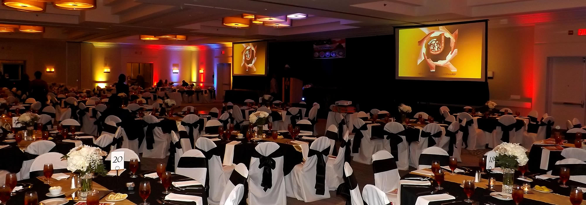 Interior photo of a fundraising gala